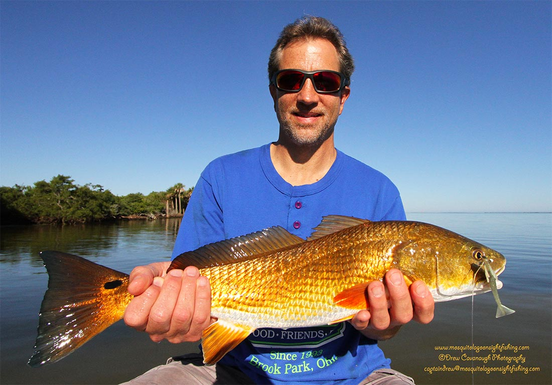 Cocoa beach fishing titusville red drum bull redfish for Red drum fishing rigs